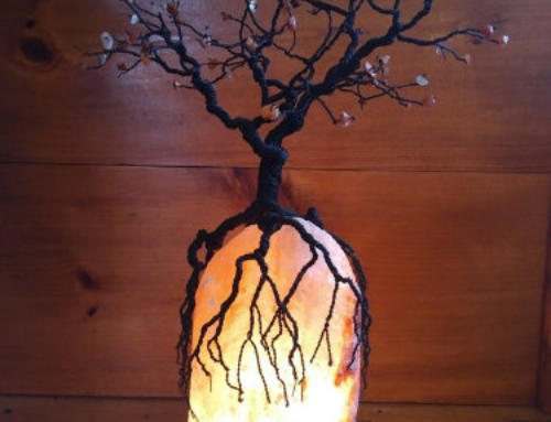 Salt Lamps and Tree of Life